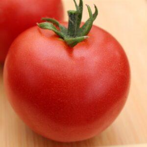 Tomato Gardeners Delight (2)