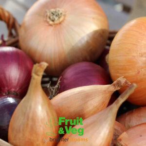 Onions, Shallots & Garlic