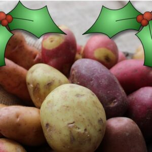 Christmas Cropping